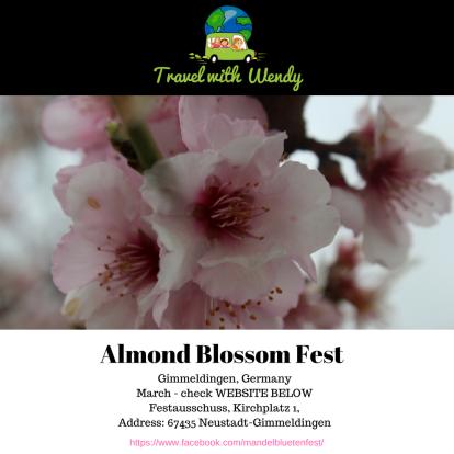 Almond Blossom fest - Gimmeldingen.png