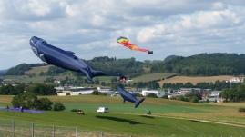 seasonal fest - kite fest1