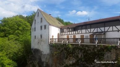 TWW- Wildenstein view