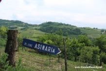 TWW - Castel Boglione