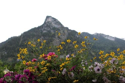 TWW - views from Oberammergau