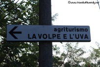 travel-with-wendy-cooking-in-italy-sign-for-la-volpe-e-luva