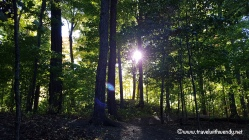 travel-with-wendy-shelburne-farms-forest-fall-in-love-with-vermont-www-travelwithwendy-net