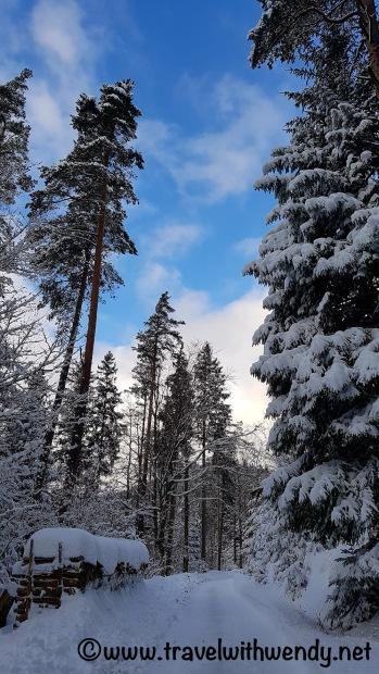 hills-of-baiersbronn-schwarzwald-germany