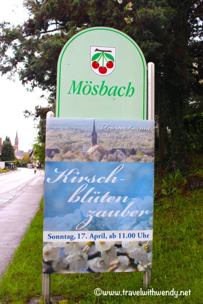 Mosbach Cherry Blossomfest