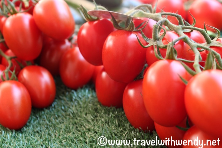 Summer tomatoes - 2016