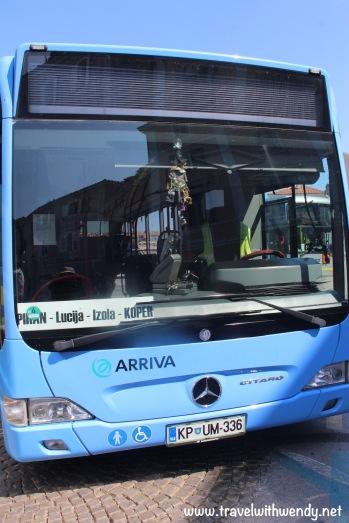 Local busses - Piran