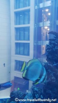 Sealife Aquarium - Aquadom Elevator